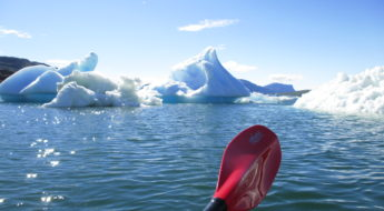 Kayak tra gli iceberg