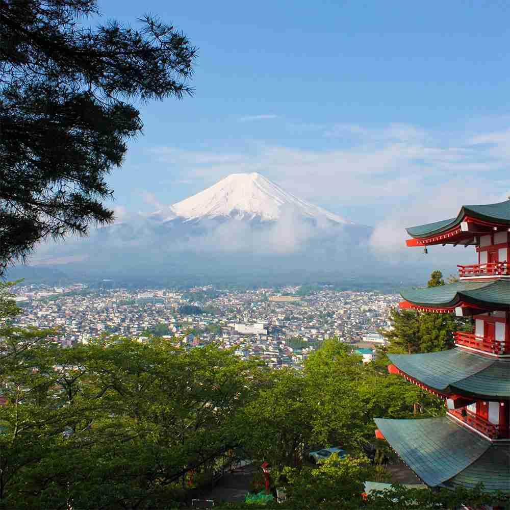 Viaggio di gruppo in Giappone
